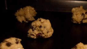Baking of chocolate chip and raisin cookies timelapse stock video footage