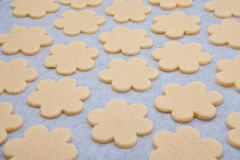 Baking cookies at home Royalty Free Stock Photography