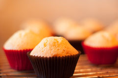 Baking cupcake, muffins on Oven-tray close up. Delicious baking chocolate cupcake, baking chocolate muffins royalty free stock photography