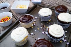 Decorating chocolate and vanilla cupcakes Royalty Free Stock Photos