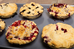 Baking homemade fresh fruit pies. Six homemade fresh fruit pies on a tray made with strawberries raspberries blueberries blackberries Stock Photo