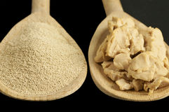 Baking ingredient yeast powder and fresh yeast Royalty Free Stock Image