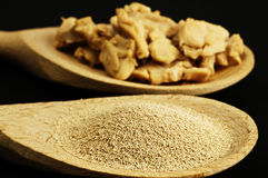 Baking ingredient yeast powder and fresh yeast Stock Photos