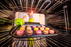 Baking macarons in the oven. Royalty Free Stock Image
