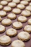 Baking macarons Royalty Free Stock Image
