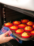 Baking muffins. Woman hand taking out some fresh baked muffins from the oven Royalty Free Stock Photo