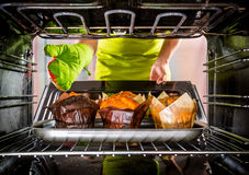 Baking muffins in the oven Stock Photography