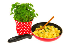 Baking new potatoes with parsley Stock Photography