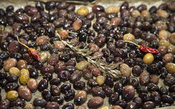Baking organic olives Stock Photography