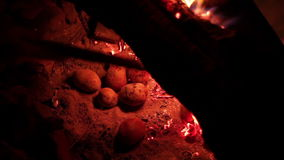 Baking potatoes in the campfire stock footage