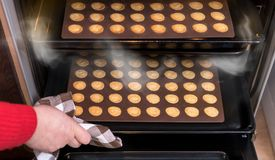 Christmas nut pastry in open hot oven. Baking sheets and molds, hand with dish towel, steam and sweet shortbreads Stock Image