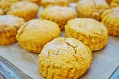 Baking sweet potato scones Stock Photography