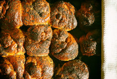 Baking. Tasty buns with poppy seeds spices hot Stock Images