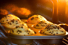 Baking tray with muffins. In hot oven stock images