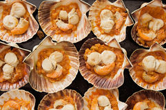 Baking tray of scallops cooked Royalty Free Stock Photo