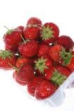 Bakje van Aardbeien Royalty-vrije Stock Afbeeldingen