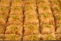 Baklava. Freshly made Turkish/Greek baklava Stock Image