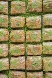Baklava de la cocina turca, Turquía Foto de archivo libre de regalías