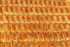 Baklava. Turkish baklava,also well known in middle east ,close up Stock Photos