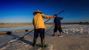 Bakmanarbete på salt fält på solnedgången stock video
