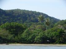 Bako国家公园 沙捞越 自治市镇 马来西亚 免版税图库摄影