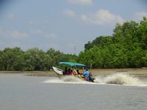 Bako国家公园 沙捞越 自治市镇 马来西亚 免版税库存照片