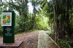 Bako National Park - Borneo - Malaysia Royalty Free Stock Photo