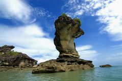 BAKO NATIONAL PARK - SARAWAK Royalty Free Stock Photo