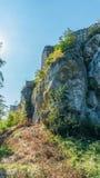 Bakowiec城堡废墟 图库摄影
