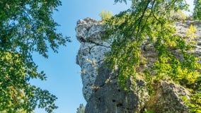 Bakowiec城堡废墟 免版税库存图片