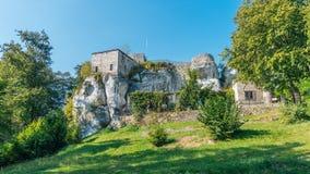 Bakowiec kasztelu ruiny Zdjęcia Royalty Free