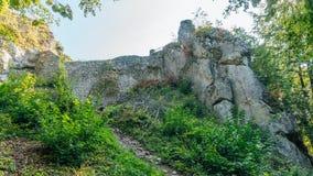 Bakowiec-Schloss-Ruinen Lizenzfreies Stockfoto