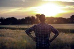 Bakre sikt av bonden i fält på solnedgången royaltyfri bild
