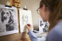 Bakre sikt av den kvinnliga tonårs- bilden för konstnärSitting At Easel teckning av hunden från fotografiet i kol fotografering för bildbyråer