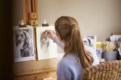 Bakre sikt av den kvinnliga tonårs- bilden för konstnärSitting At Easel teckning av hunden från fotografiet i kol arkivfoton