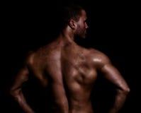 Bakre sikt av den muskulösa mannen Royaltyfri Fotografi