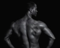 Bakre sikt av den unga muskulösa mannen Royaltyfria Bilder