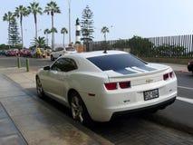 Bakre sikt av en vit färg Chevrolet Camaro SS Royaltyfri Bild