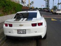 Bakre sikt av en vit färg Chevrolet Camaro SS Royaltyfri Fotografi