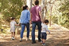 Bakre sikt av familjen som promenerar banan till och med Forest Together royaltyfri foto