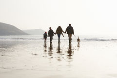 Bakre sikt av familjen som promenerar vinterstranden med hunden Royaltyfria Foton