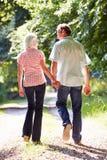 Bakre sikt av mitt åldrades par som promenerar landsgränden Royaltyfri Foto
