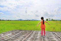 Bakre sikt av små asiatiska armar för barnflickaelasticitet och som kopplar av på de unga gröna risfältfälten med berg- och molnh fotografering för bildbyråer