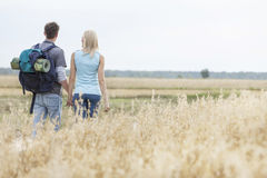 Bakre sikt av unga fotvandra par som går till och med fält Royaltyfri Foto