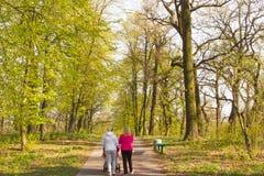 Bakre sikt på två unga flickor som går och talar på våren Oak Park Royaltyfri Bild