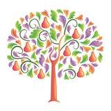 bakre tree Arkivfoton