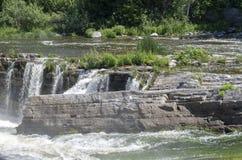 Baksida för gödsvin` s parkerar andwaterfall 28 Arkivfoto