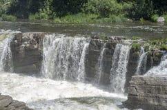 Baksida för gödsvin` s parkerar andwaterfall 29 Royaltyfri Bild