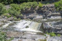 Baksida för gödsvin` s parkerar andwaterfall 32 Arkivfoton