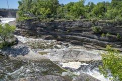 Baksida för gödsvin` s parkerar och vattenfall 4 Arkivfoto